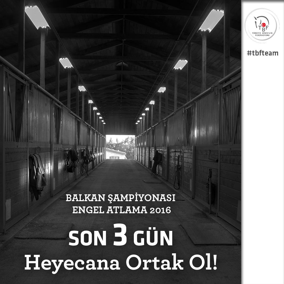 Barisilkhan_bacchus_TBF_instagram_balkan_24_08_2016